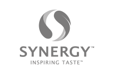 b2b marketing agency synergy logo